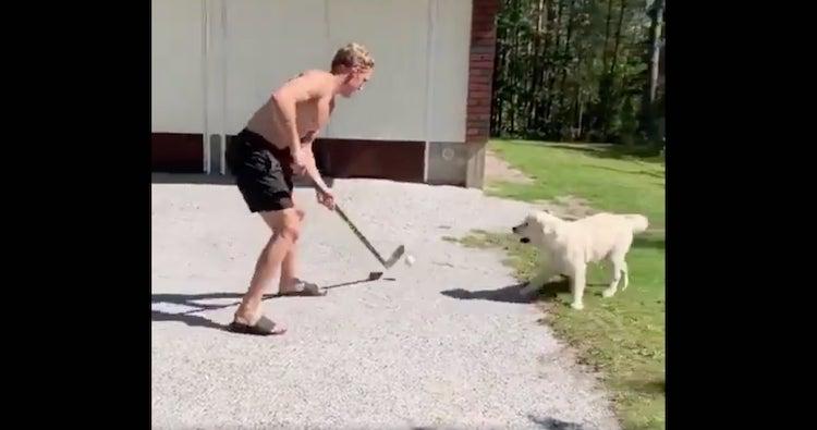 VIDEO: Mikko Rantanen kikkaili koiransa kanssa - NHL jakoi videon